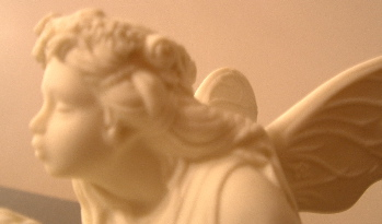 fairyporc.jpg